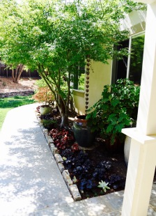side yard landscape design