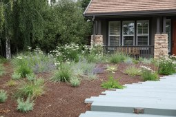 Livermore_garden_design_meadow_close