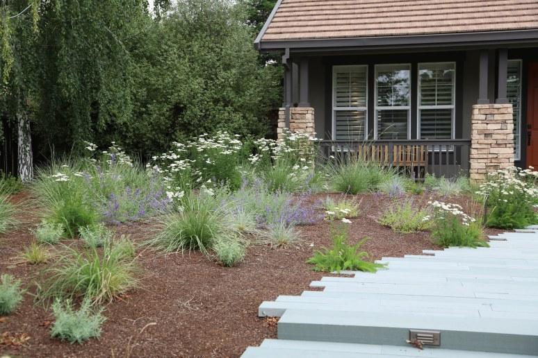 Livermore_garden_design_meadow_close