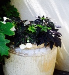 Container plantings add height and keep excess moisture away from foundations.