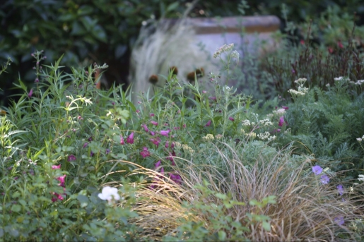 A drought tolerant perennial border can still look lush and beautiful.